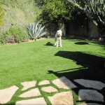 Dogs love turf lawns. So will you!
