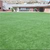 Bagdad School Playground
