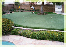 Southwest Greens Synthetic Turf Arizona Tee Lines
